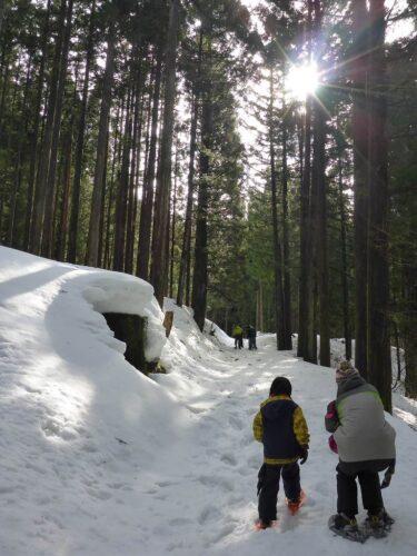 冬の森を楽しもう スノーシューイング!<第3弾>~もっと遠くへ歩こう~